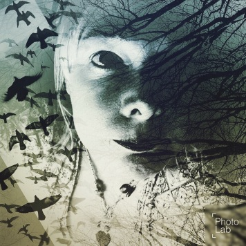 witch and birds with different face