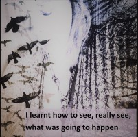 I learnt to see