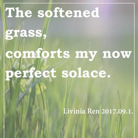 soft grass 2