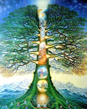 the tree of lifedc4cbf0964f4fa9920b23c8f4c5ae9e9--tree-of-life-pictures-spiritual-love
